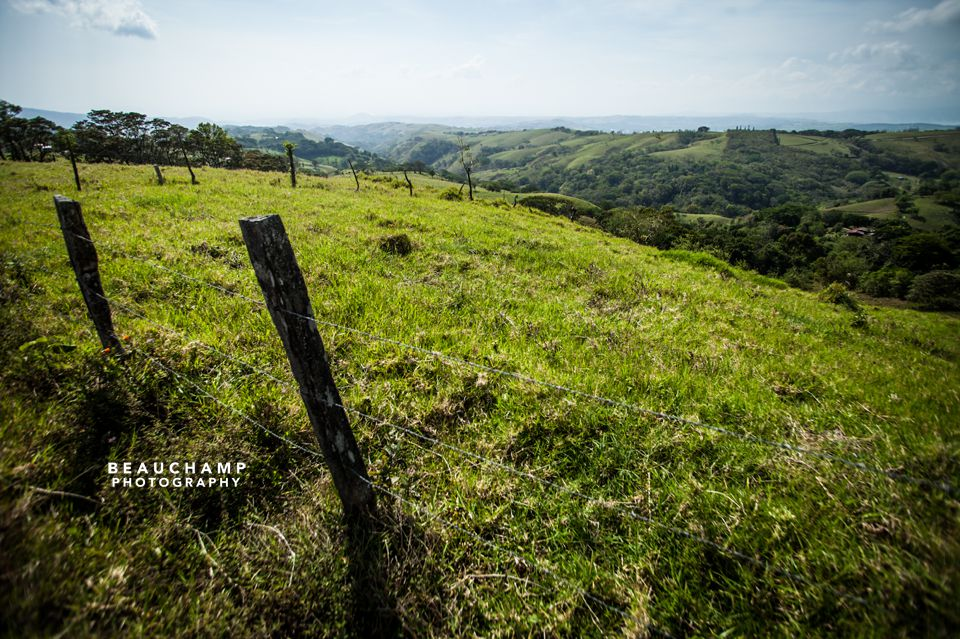 The drive from La Fortuna to Santa Elena was simply picturesque with its rolling pastoral hills.
