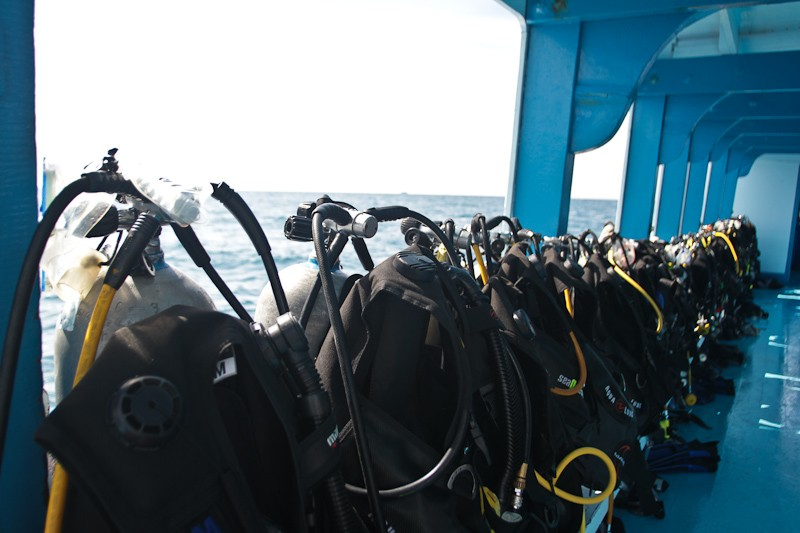 Scuba diving in Koh Tao, Thailand-2762